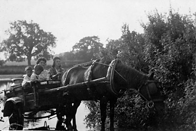 Taking milk to Blickling Mill - 1942